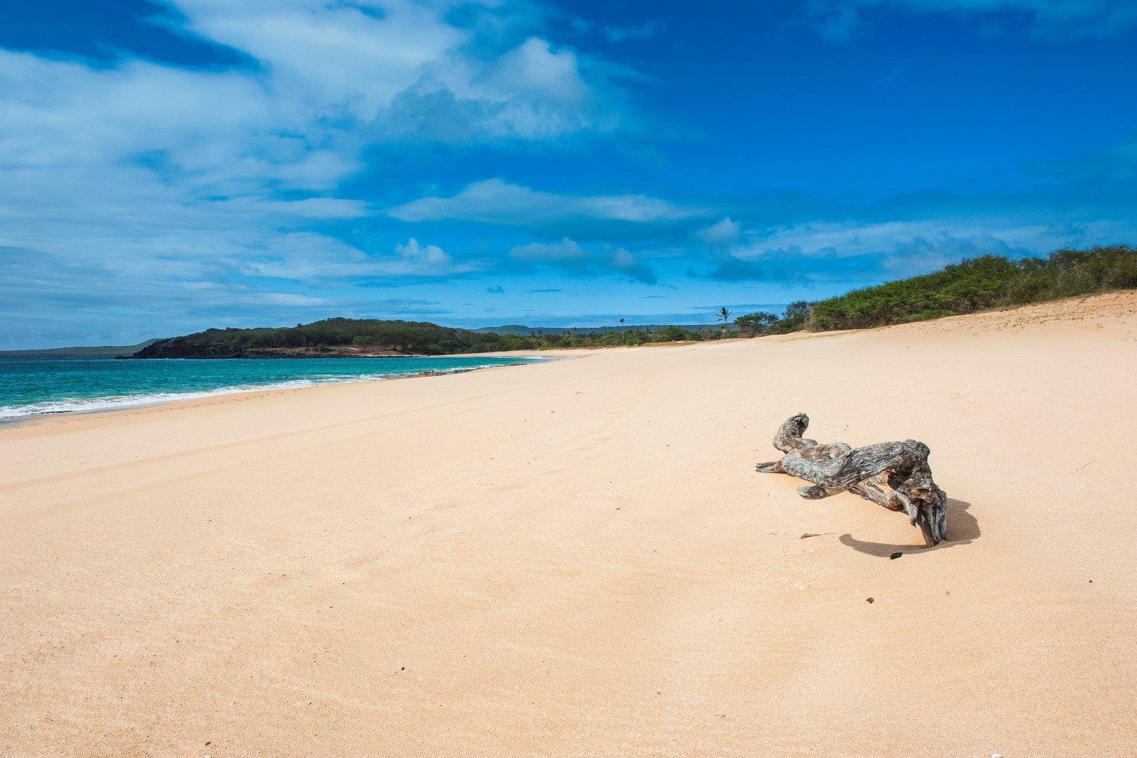Papohaku Beach, island of Molokai, Hawaii, United States of America, Pacific